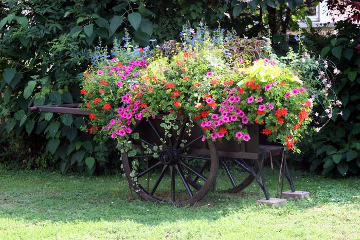 Charette_de_fleurs_place_Raiffeisen